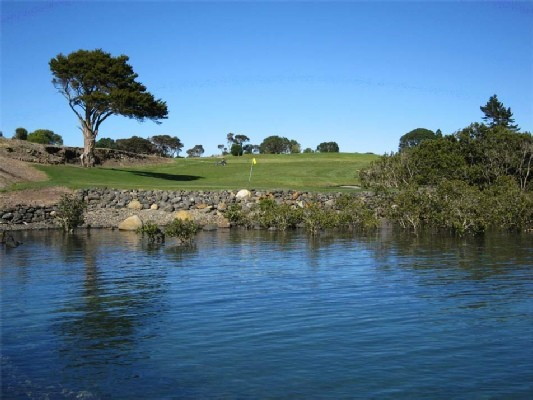 Waitangi Golf Club - 11th Green from Water-1.jpg