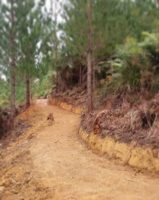 Hua Hill 1 1.jpg